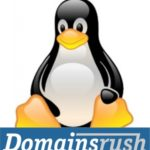 Domainsrush Web Hosting